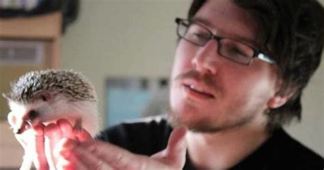 Prickled by Pet Crazes: African Pygmy Hedgehogs   HuffPost UK