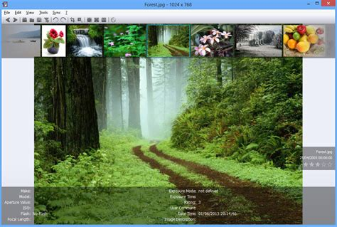 nomacs is a free image viewer with some unusual extras