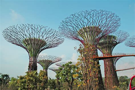Blog: Singapore Supertrees in the Marina South Gardens