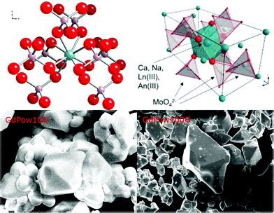 Characterization of powellite-based solid solutions by