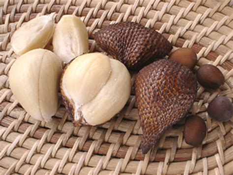 The Miracle from Herbal Life: Usefulness Salak Fruit
