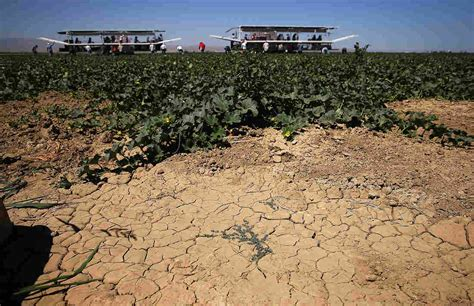 Scary Times For California Farmers As Snowpack Hits Record