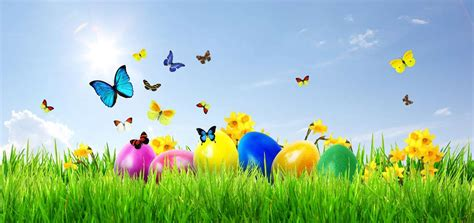 Henshalls Insurance Brokers - Easter fun's a riot in our