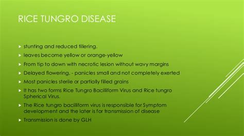 Bacterial and viral diseases of rice